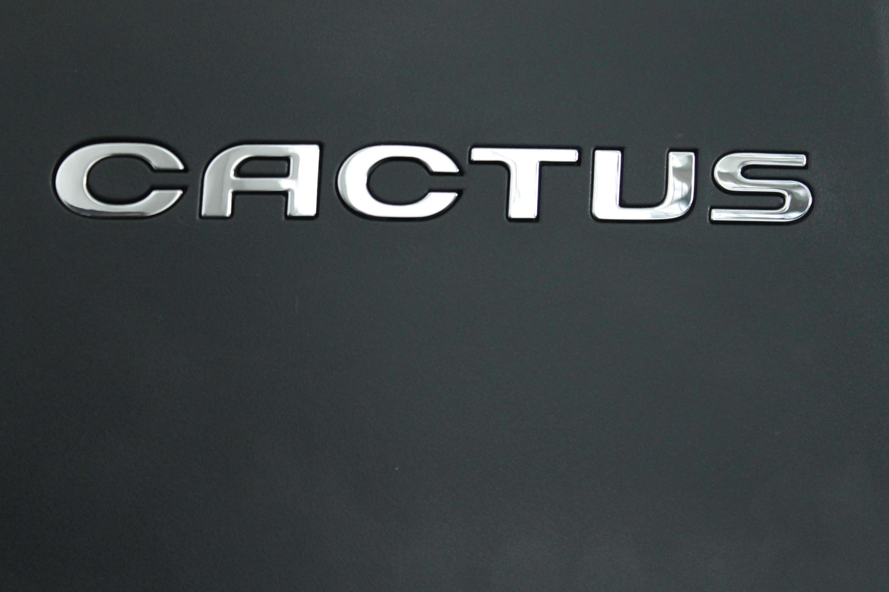 2014 Yeni Citroen C4 Cactus Shine