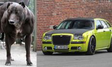 HplusB-Design Chrysler 300C SRT