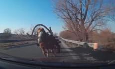 Bu Sefer At Arabası Kazaya Karışıyor